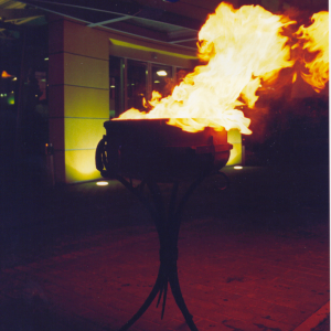 Kalvisko darbo deglas2